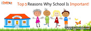 Top 5 Reasons Why School Is Important